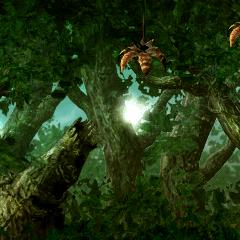 Third Area, treetops.