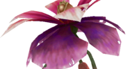 Dendrobium (Final Fantasy IX)