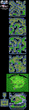 FFII Tropical Island Map