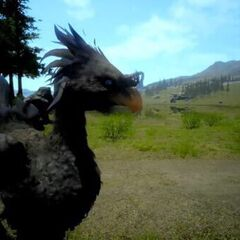 Black chocobo in <i><a href=
