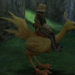 Layle riding a chocobo.
