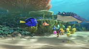 Dory and the Class