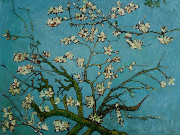 File:360 Branches of an Almond Tree in Blossom Oil Painting Reproduction by Vincent Van Gogh.jpg