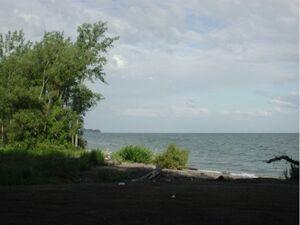 Lake Ontario from shore