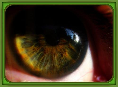 File:Eyedeal.jpg