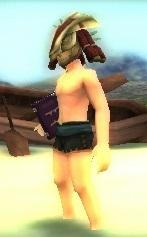 File:DLC Sorcerer Mercenary.png
