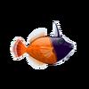 Blackhead Filefish (1)