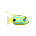 Hifin Snapper (1).png