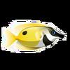 Rabbitfish (1)