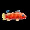 Blacktip Grouper (1)