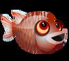 Big Eye Soldierfish (baby)