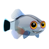 File:Mini Dart Goby (2).png