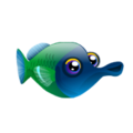 Water Wrasse (2).png