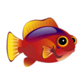 Flame Hawkfish (2).png
