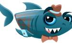 Adult Salesman Fish