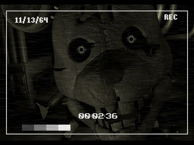 File:Rat Close to the Camera.jpg