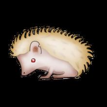 Not a real pet hog