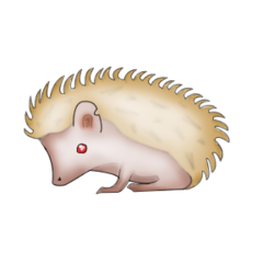 File:Not a real pet hog.png