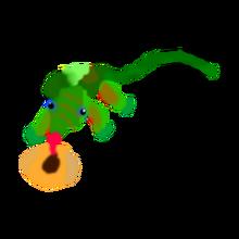 Gecko pet