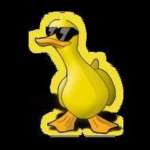 Hipster pet duck