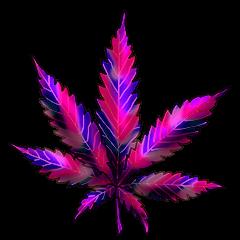 File:Cannabis polar lights.png