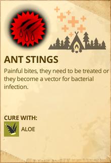 Ant stings