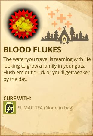 File:Blood Flukes.PNG