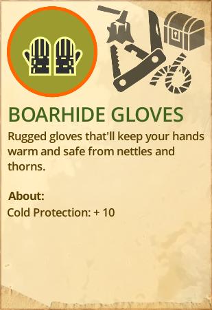 File:Boarhide gloves.PNG