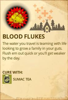 Blood Flukes-0