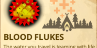 Blood Flukes