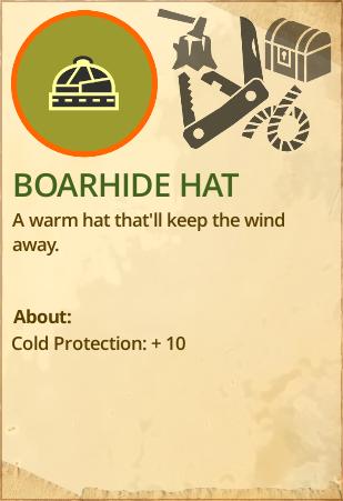 File:Boarhide hat.PNG