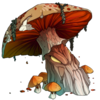 Ancient Fungus