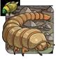 Mealworm