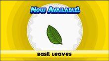 Unlocking basil leaves