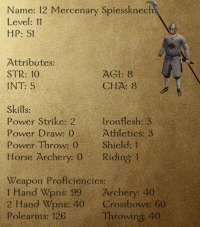 I2 Mercenary Spiessknecht
