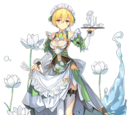 Water Lily (June Bride)