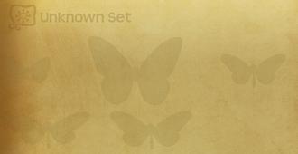 Unknown Set§Flutterpedia