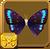 Lilac-banded Euselasia§Headericon