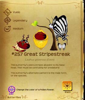 Great Stripestreak§Flutterpedia Upgraded