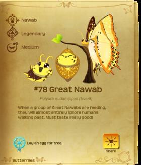 Great Nawab§Flutterpedia