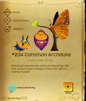 Common Archduke§Flutterpedia