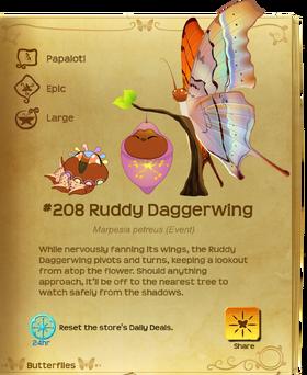 Ruddy Daggerwing§Flutterpedia
