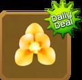Shop§DailyDeal