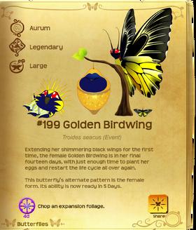 Golden Birdwing§Flutterpedia Upgraded