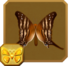 Many-banded Daggerwing§Headericon