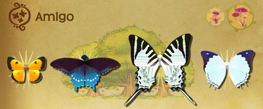 Amigo Set§Flutterpedia