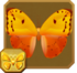 Orange-washed Sulphur§Headericon