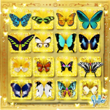 Update20130417NewButterflies