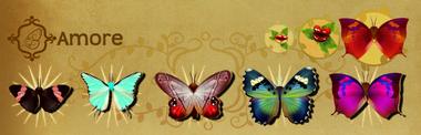 Amore Set§Flutterpedia