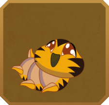 Hewitson's Acraea§Caterpillar